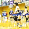 春季大会(女子バレーボール)